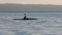 Canoeist in the Morning, Waitemata